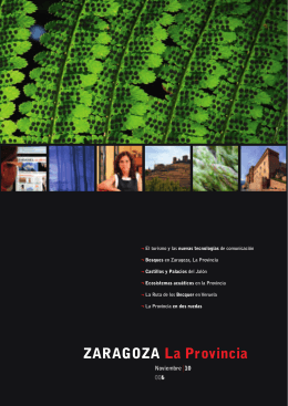 ZARAGOZA La Provincia - patronato de turismo de la diputación de