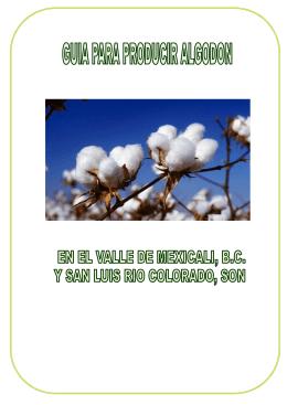 Guía para producir algodón