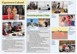 Experiencia Cultural Excursión privada a Tokio