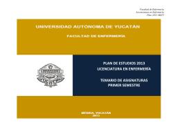 plan de estudios 2013 licenciatura en enfermería temario