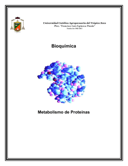 Bioquímica Metabolismo de Proteínas