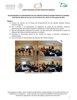 Taller Regional de Convergencia de los Comités