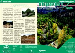 Boletín nº 5 – Especial - Sieteleguas
