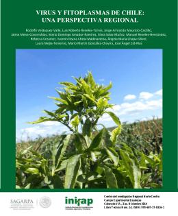 virus y fitoplasmas de chile: una perspectiva
