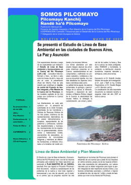 Boletín 4 - Pilcomayo.net