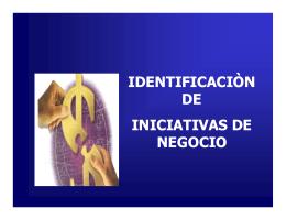 IDENTIFICACIÓN DE IDEAS DE NEGOCIO.