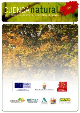 Ver documento en pdf - Diputación Provincial de Cuenca