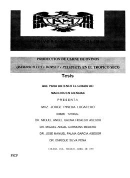 MVZ. JORGE PINEDA LUCATERO - Dirección General de Servicios