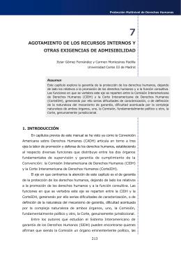 7. Agotamiento de los recursos internos y otras exigencias de