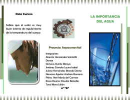 folleto de la importancia del agua