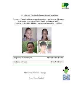 A. Informe Final de la Propuesta de Consultoría Proyecto