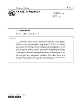 Consejo de Seguridad - PoA-ISS