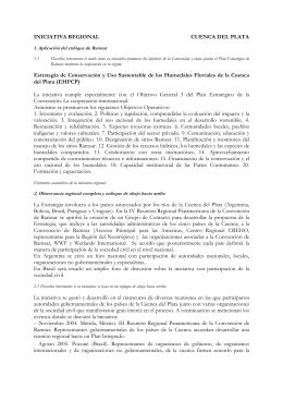 INICIATIVA REGIONAL CUENCA DEL PLATA Estrategia de