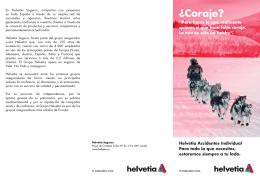 HELVETIA_FICHA DE ACCIDENTES