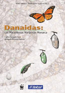 Las maravillosas mariposas Monarca