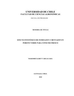 UNIVERSIDAD DE CHILE - Repositorio Académico