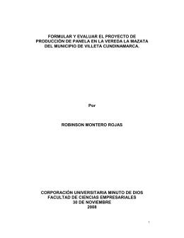 FORMULAR Y EVALUAR EL PROYECTO DE PRODUCCIÓN DE