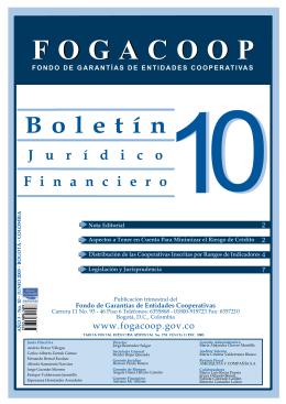 Descargar el archivo Boletín Financiero y Jurídico No. 10Tipo de
