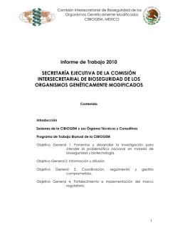 Informes de actividades de la Secretaría Ejecutiva - 2010