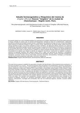 Estudio farmacognóstico fitoquímico rizoma Zingiber