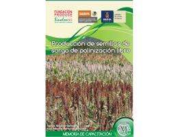 Multiplicacion de semilla de variedades de sorgo