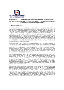 1 bases para la licitaciìn p blica internacional nº 29025001-004