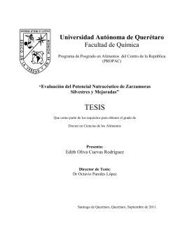Evaluación del potencial nutracéutico de zarzamoras silvestres y