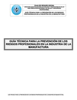 guía técnica para la prevención de los riesgos profesionales en la