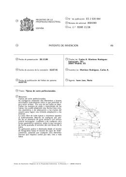 TIJERAS DE CORTE PERFECCIONADAS.(ES2020064)