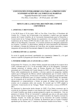 Informe sobre la II reunión ()