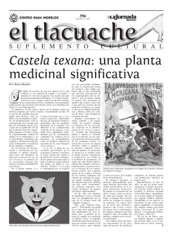 Castela texana: una planta medicinal significativa