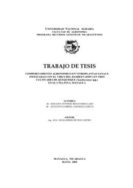 TRABAJO DE TESIS - cenida - Universidad Nacional Agraria
