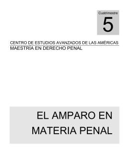 EL AMPARO EN MATERIA PENAL