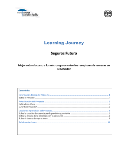 Full Learning Journey of Seguros Futuro (Spanish)