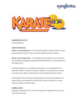 Ficha Tecnica Karate con Tecnologia Zeon.cdr