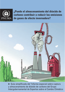 ¿Puede el almacenamiento del dióxido de carbono