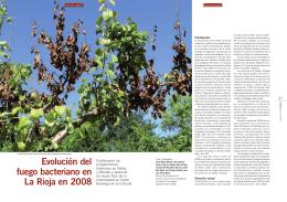 Evolución del fuego bacteriano en La Rioja en 2008