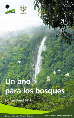 Un año para los bosques - Center for International Forestry Research