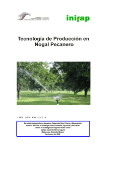Tecnología de Producción en Nogal Pecanero - Biblioteca