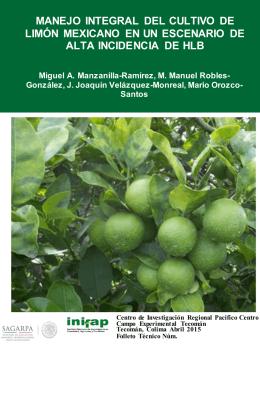 manejo integral del cultivo de limón mexicano en un