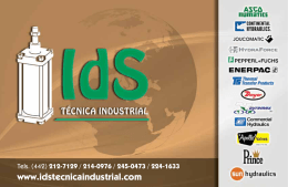 www.idstecnicaindustrial.com