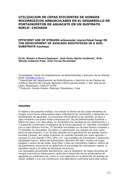 utilizacion de cepas eficientes de hongos micorrizicos arbusculares