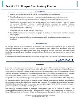 PRACTICA 11 - Biología General