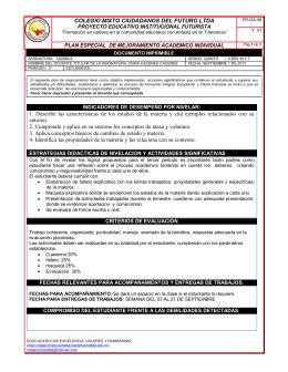 COLEGIO MIXTO CIUDADANOS DEL FUTURO LTDA 1. Describe