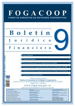Descargar el archivo Boletín Financiero y Jurídico No. 9Tipo de