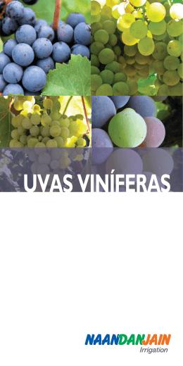 Uvas Viníferas Prospecto - NaanDan Jain Irrigation Ltd