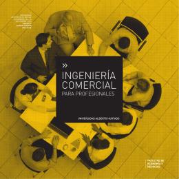 INGENIERÍA COMERCIAL - Postgrado Universidad Alberto Hurtado