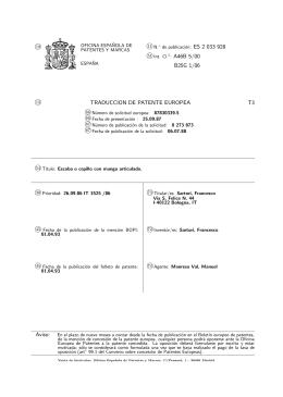 ESCOBA O CEPILLO CON MANGO ARTICULADO.(ES2033928)