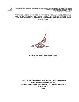 factibilidad del diseño de un humedal de flujo