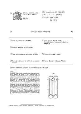 MULTIPLES CUBIERTAS DE NEUMATICO EN UNA SOLA RUEDA